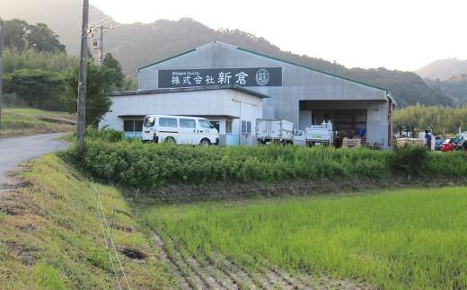新倉さんの精米所。