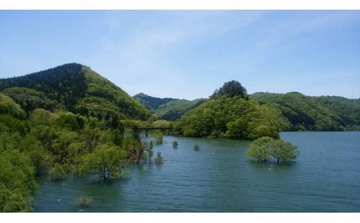 雪どけ後の錦秋湖