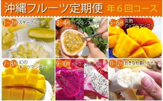 沖縄フルーツ定期便(年6回コース)