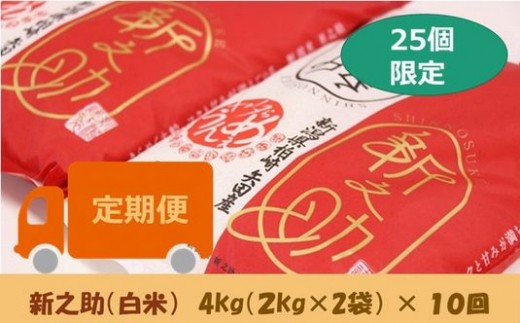 [E920]【定期便】ヤタらうんめぇ 新之助 白米(4㎏×10回)