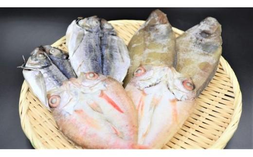 939.山陰浜田 シーライフより3種の魚を手塩に掛けた一夜干し詰め合わせ
