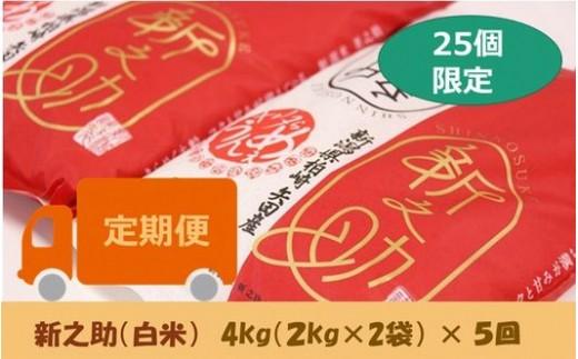 [D532]【定期便】ヤタらうんめぇ 新之助 白米(4㎏×5回)