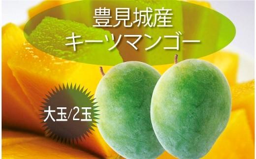 【2020年発送】豊見城産キーツマンゴー(大玉2玉)