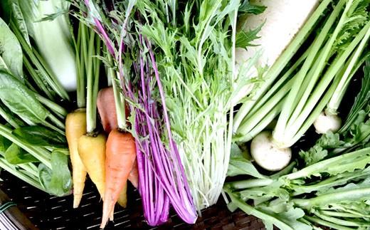 【定期便:年12回】旬の野菜詰め合わせ<ホリケンファーム> 31-SHK02