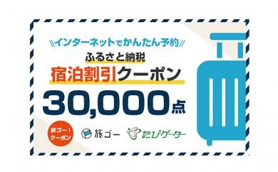 墨田区 旅ゴー!クーポン(30,000点)[№5630-0417]