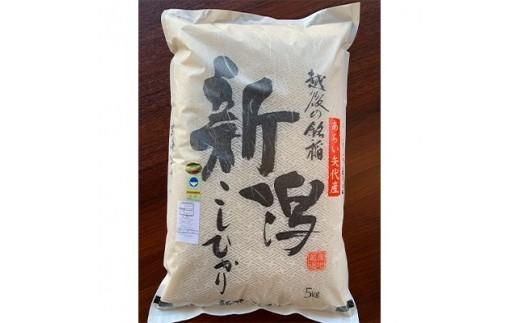 新潟県矢代産コシヒカリ 5kg【1089324】