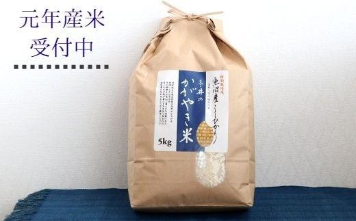 冬井のかがやき米