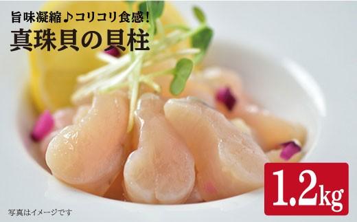 【幻の味!約1.2kg】真珠貝の貝柱(生食可) <瀬川漁協>(カタログコード:B-5)[CDG001]
