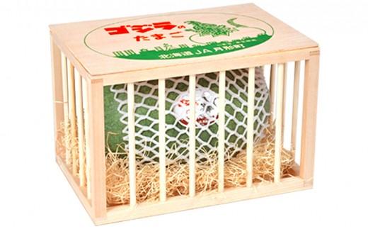 [№5783-0332]北海道月形町産ゴジラのたまご(木箱入り)約9kg(1玉入り)