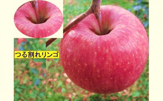 [№5676-0104]【訳あり】サンフジりんご ツル割れ 10kg