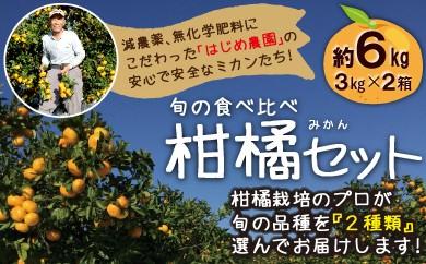 <限定>減農薬 特別栽培 旬の食べ比べ柑橘(みかん)<約6kg>セット