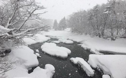 ミネラル豊富な西和賀の雪解けの伏流水