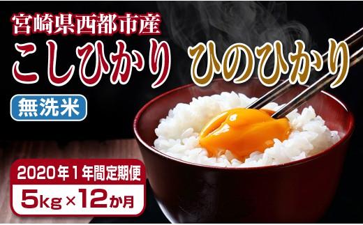 【2020年1年間定期便】宮崎県産ヒノヒカリ・コシヒカリ無洗米 5kg×12回<9-2>