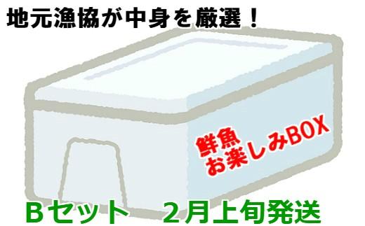 [02-611]漁協厳選!鮮魚お楽しみBOX(Bセット)【2月上旬発送】