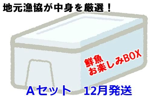 [02-604]漁協厳選!鮮魚お楽しみBOX(Aセット)【12月発送】