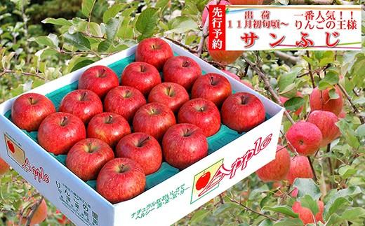 旬のりんご サンふじ 18玉~20玉 約5kg【平塚果樹園】