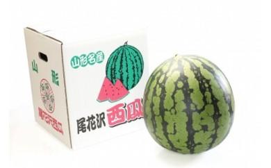 AP84-NT【定期便】【山形県産】人気フルーツ 令和食べ切りコース【年7回】【2020年度発送】