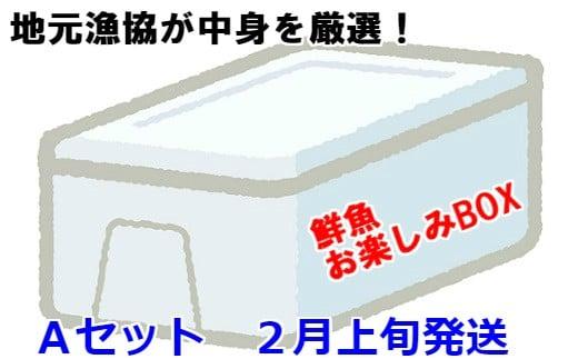 [02-606]漁協厳選!鮮魚お楽しみBOX(Aセット)【2月上旬発送】