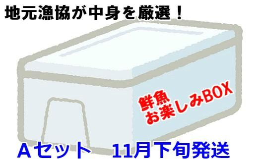[02-603]漁協厳選!鮮魚お楽しみBOX(Aセット)【11月下旬発送】