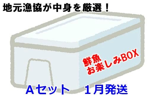[02-605]漁協厳選!鮮魚お楽しみBOX(Aセット)【1月発送】