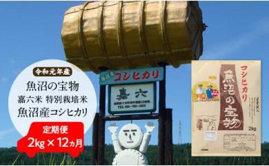 【令和元年産】定期便(2㎏×12か月)魚沼の宝物 嘉六米特別栽培米魚沼産コシヒカリ
