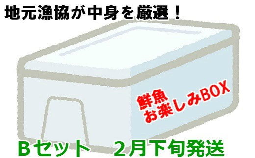 [02-612]漁協厳選!鮮魚お楽しみBOX(Bセット)【2月下旬発送】