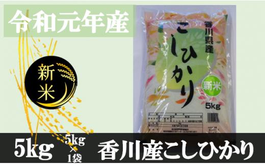 995 令和元年産香川県産こしひかり 5kg 紙袋配送