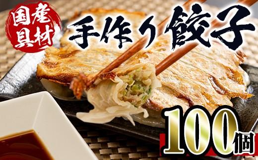 手作り餃子100個セット(10個×10パック)