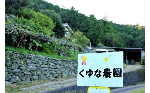 くゆな農園は、吉野川市美郷の標高約400m、深い山あいに位置しています。
