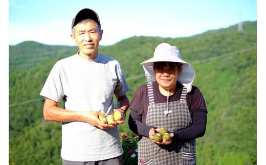 くゆな農園を営まれる上野さんご夫妻。美味しい果物作りに真剣に取り組まれています。