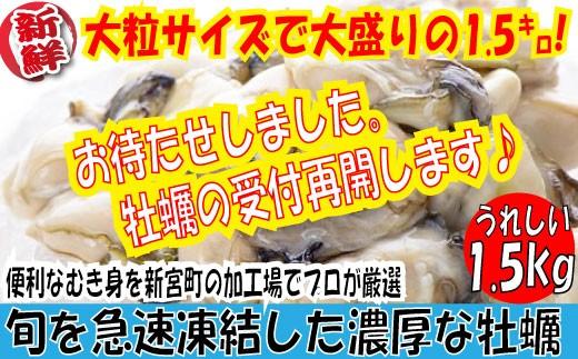 A531.旬を急速凍結した濃厚な牡蠣(1.5kg)