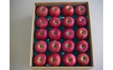 BM164松伸フルーツのご家庭用りんごサンふじ10kg(40から50玉)