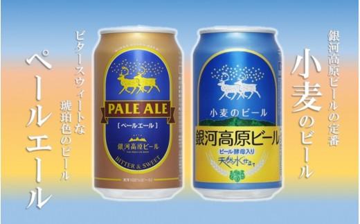選べない貴方に!二種のビールセット 銀河高原ビール 各350ml✕5缶