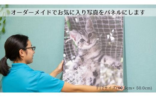 No.221 【オーダーメイド】キャンバス印刷額装作成(60.5cm×50.0cm)
