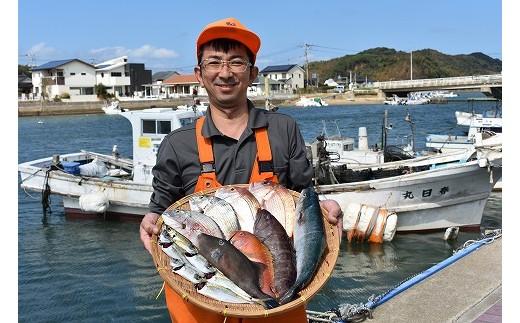 【12回定期便】旬な魚介類を毎月お届け!福津の魚介類定期便[A6102]