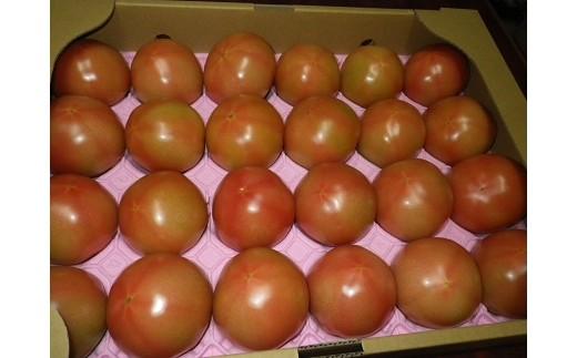 バカス醗酵有機で作られた『喜界島トマト』B-⑲