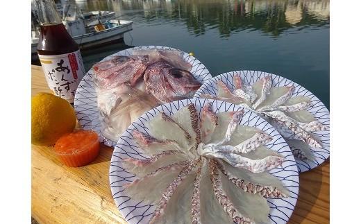 福津市福間漁港水揚げ 天然真鯛しゃぶしゃぶセット[A2146]