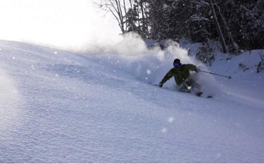 [№5779-0293]日高国際スキー場ナイター共通シーズン券(学生・有資格者)