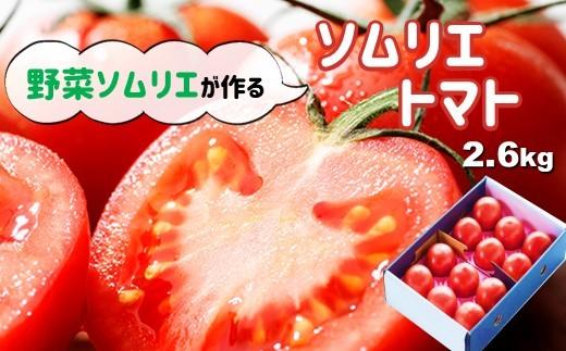 G3 ソムリエトマト (トマト2.6kg)
