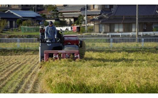 最良の原料を求めて、山田錦の名産地西脇市に蔵人が移り住み、自らお米を育てています。