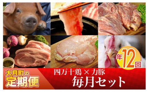 【定期便】四万十鶏 × 力豚 が届く 年12回コース