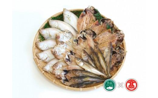 【30-B1】氷温製法 山陰産干物詰合せ(大山ブランド会)