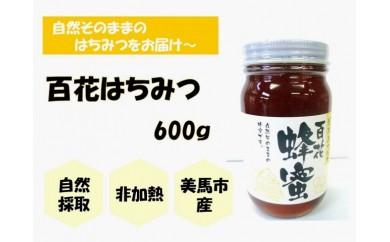 【美馬市産】日本みつばち<百花はちみつ>600g