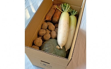 [№5742-0607]【秋場農園】有機JAS 野菜セット