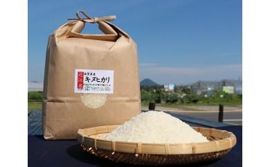 【令和元年度産】近江米「キヌヒカリ」 20kg