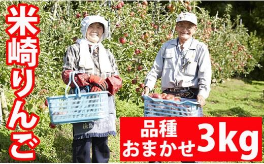 米崎りんご品種おまかせ3㎏【11~12月発送】