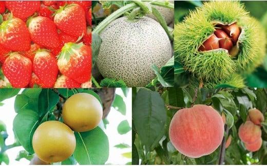 D-101 季節のフルーツセット(いちご、メロン、桃、梨、栗)