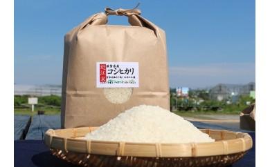 【令和元年度産】近江米「コシヒカリ」 5kg