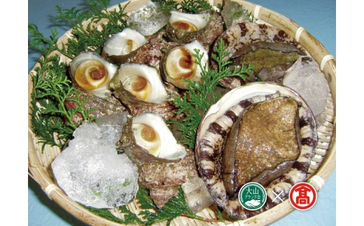 【30-T2】あわび・さざえ海の貝セット(大山ブランド会)
