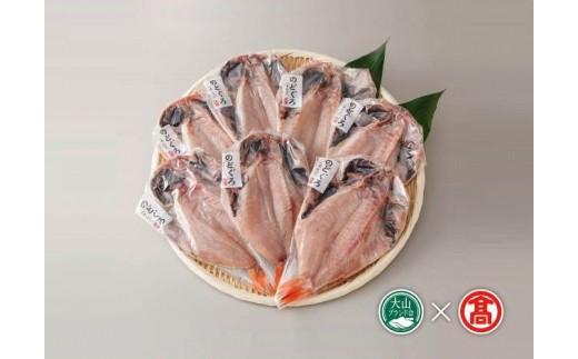 【35-N3】日本海西部産 開きのどぐろ干物7枚(大山ブランド会)